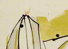 Lilien 1